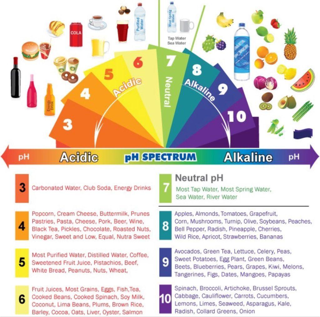 22 1024x1014 - L'alimentation anti-inflammatoire pour les nuls (Ou les pressés qui veulent un résumé succinct). nourriture, alimentation anti-inflammatoire, alimentation, aliment acidifiant